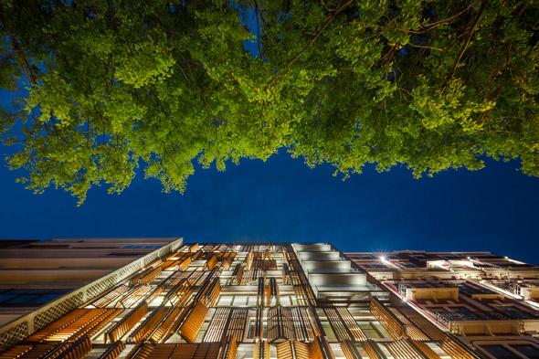 Lisbon Wood by Plano Humano Photo ©João Morgado